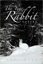 The Year of the Rabbit